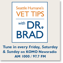 E-News-Vet-Tips-with-Dr-Brad.png