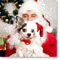 Holiday-Santa.jpg
