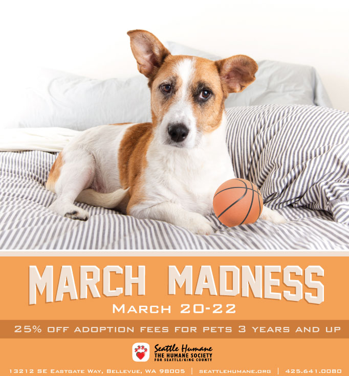 MarchMadness2015_FB.jpg