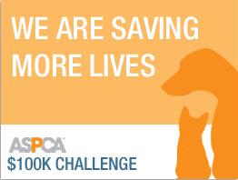 ASPCA Contest Logo
