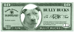 bullybucks-web[1].jpg