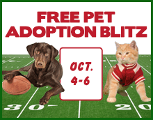 Free Pet Adoption Blitz