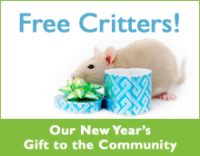 newyear-free-critters-internal.png